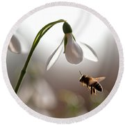 Snowdrops And The Bee Round Beach Towel