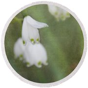 Round Beach Towel featuring the photograph Snowdrops by Katie Wing Vigil