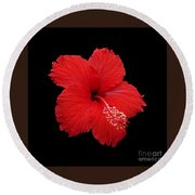 Round Beach Towel featuring the photograph Snowflake Hibiscus by Judy Whitton