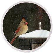 Snowy Cardinal Round Beach Towel