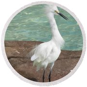 Snowy Egret Round Beach Towel by DejaVu Designs