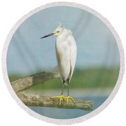 Round Beach Towel featuring the photograph Snowy Egret by Kim Hojnacki