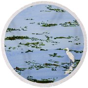 Snowy Egret Round Beach Towel by Mike Robles