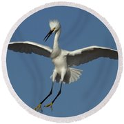 Round Beach Towel featuring the photograph Snowy Egret Photo by Meg Rousher