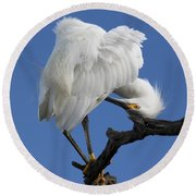 Round Beach Towel featuring the photograph Snowy Egret Photograph by Meg Rousher