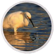 Round Beach Towel featuring the photograph Snowy Egret Reflections by John F Tsumas
