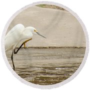 Snowy Egret Taking Advantage Of The Flood Round Beach Towel