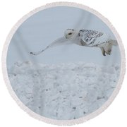 Round Beach Towel featuring the photograph Snowy Owl #1/3 by Patti Deters
