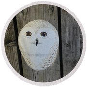 Snowy Owl Rock Round Beach Towel