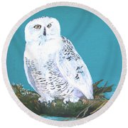Round Beach Towel featuring the painting Snowy Owl by Seth Weaver
