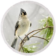 Snowy Songbird Round Beach Towel by Christina Rollo