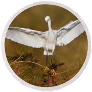 Round Beach Towel featuring the photograph Snowy Wingspread by Bryan Keil
