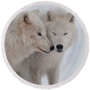 Round Beach Towel featuring the photograph Snuggle Buddies by Bianca Nadeau