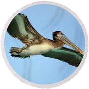 Round Beach Towel featuring the photograph Soaring Pelican by Suzanne Stout