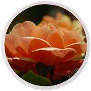 Soft Orange Flower Round Beach Towel by Matt Harang