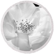 Soft Petal Rose In Black And White Round Beach Towel