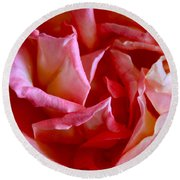 Round Beach Towel featuring the photograph Soft Pink Petals Of A Rose by Janice Rae Pariza