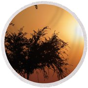 Soft Sunrise Round Beach Towel