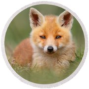 Softfox -young Fox Kit Lying In The Grass Round Beach Towel