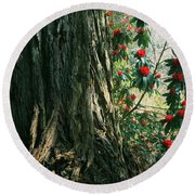 Sometimes Life Is Sweet Round Beach Towel