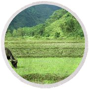 Song Chay Valley Round Beach Towel