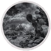 Round Beach Towel featuring the photograph Sonoran Desert 15 by Mark Myhaver