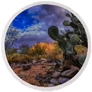 Sonoran Desert 54 Round Beach Towel