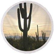 Sonoran Desert View Round Beach Towel