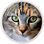 Soul Cat Round Beach Towel by Deena Stoddard