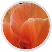 Round Beach Towel featuring the photograph Soul Desire by Jean OKeeffe Macro Abundance Art