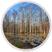 South Carolina Swamps Round Beach Towel