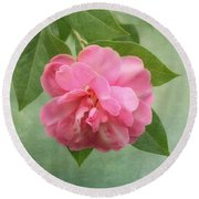 Southern Camellia Flower Round Beach Towel