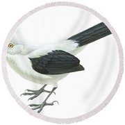 Southern Pied Babbler  Round Beach Towel