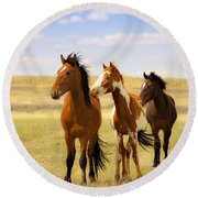 Southwest Wild Horses On Navajo Indian Reservation Round Beach Towel