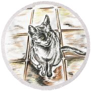 Spanish Cat Waiting Round Beach Towel by Teresa White