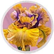 Spectacular Iris Close Up Round Beach Towel