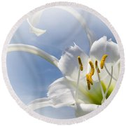 Spider Lily Round Beach Towel by Jane McIlroy