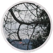Spider Tree Round Beach Towel