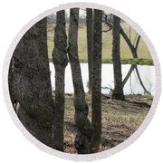 Round Beach Towel featuring the photograph Spiral Trees by Nick Kirby