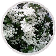 Round Beach Towel featuring the photograph Spirea Bridal Veil by Barbara Griffin