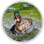 Round Beach Towel featuring the photograph Splashdown - Wood Duck by Adam Olsen
