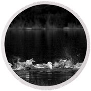Round Beach Towel featuring the photograph Splashing Seagulls by Yulia Kazansky
