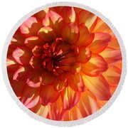 Round Beach Towel featuring the photograph Splendor In Pink And Yellow - Dahlia by Dora Sofia Caputo Photographic Art and Design