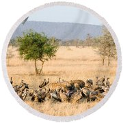 Spotted Hyenas Crocuta Crocuta Round Beach Towel by Panoramic Images