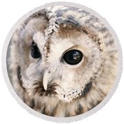 Spotted Owl Round Beach Towel