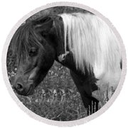 Spotted Pony Round Beach Towel