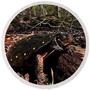 Spotted Turtle Round Beach Towel