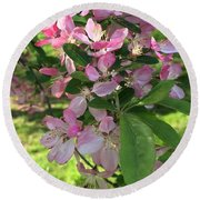 Spring Blossoms - Flower Photography Round Beach Towel