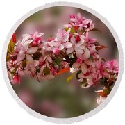 Cheery Cherry Blossoms Round Beach Towel