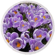 Spring Faces Round Beach Towel